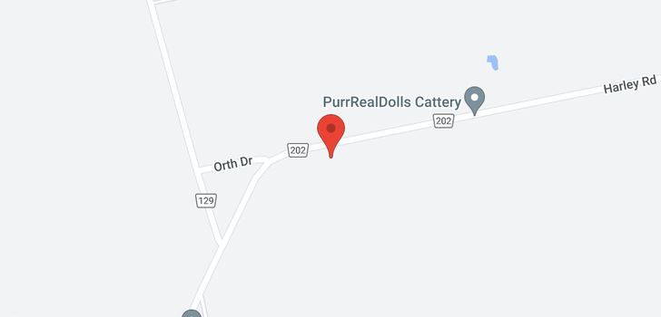map of 375 HARLEY ROAD